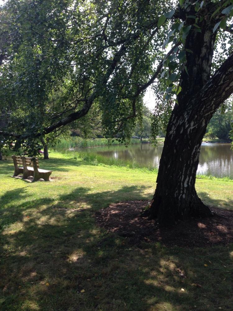 Bruce Park, Greenwich, CT
