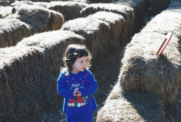 Whose idea was it to walk through this stupid hay maze?