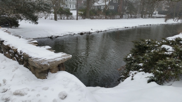 Photo by Basil N. Vanech Here in Greenwich, CT, we had snow this week, but no blizzard. Binney Park.