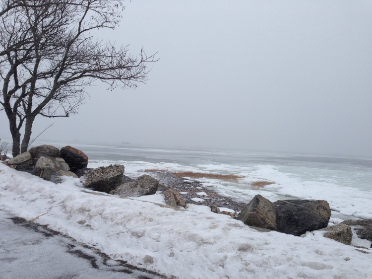 Tod's Point, Greenwich, CT. Sunday, Feb. 22.